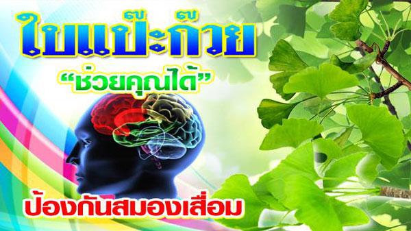 ยาและอาหารเสริมบำรุงสมอง สารสกัด ใบแป๊ะก๊วย ผสมโสมและใบบัวบก