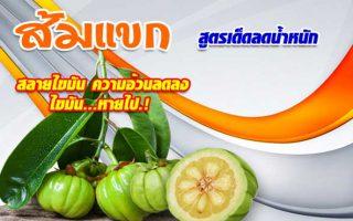 ส้มแขกลดความอ้วน และลดสัดส่วน ไขมัน