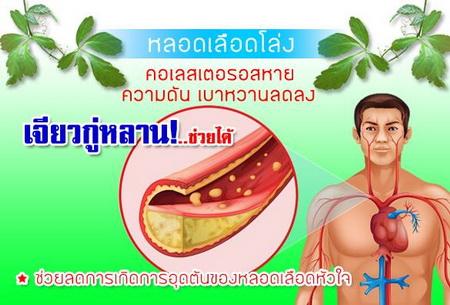 โรคความดันเบาหวาน เจียวกู่หลานช่วยได้