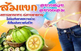 ส้มแขกสลายไขมันดีที่สุด สำหรับคนอยากลดความอ้วน